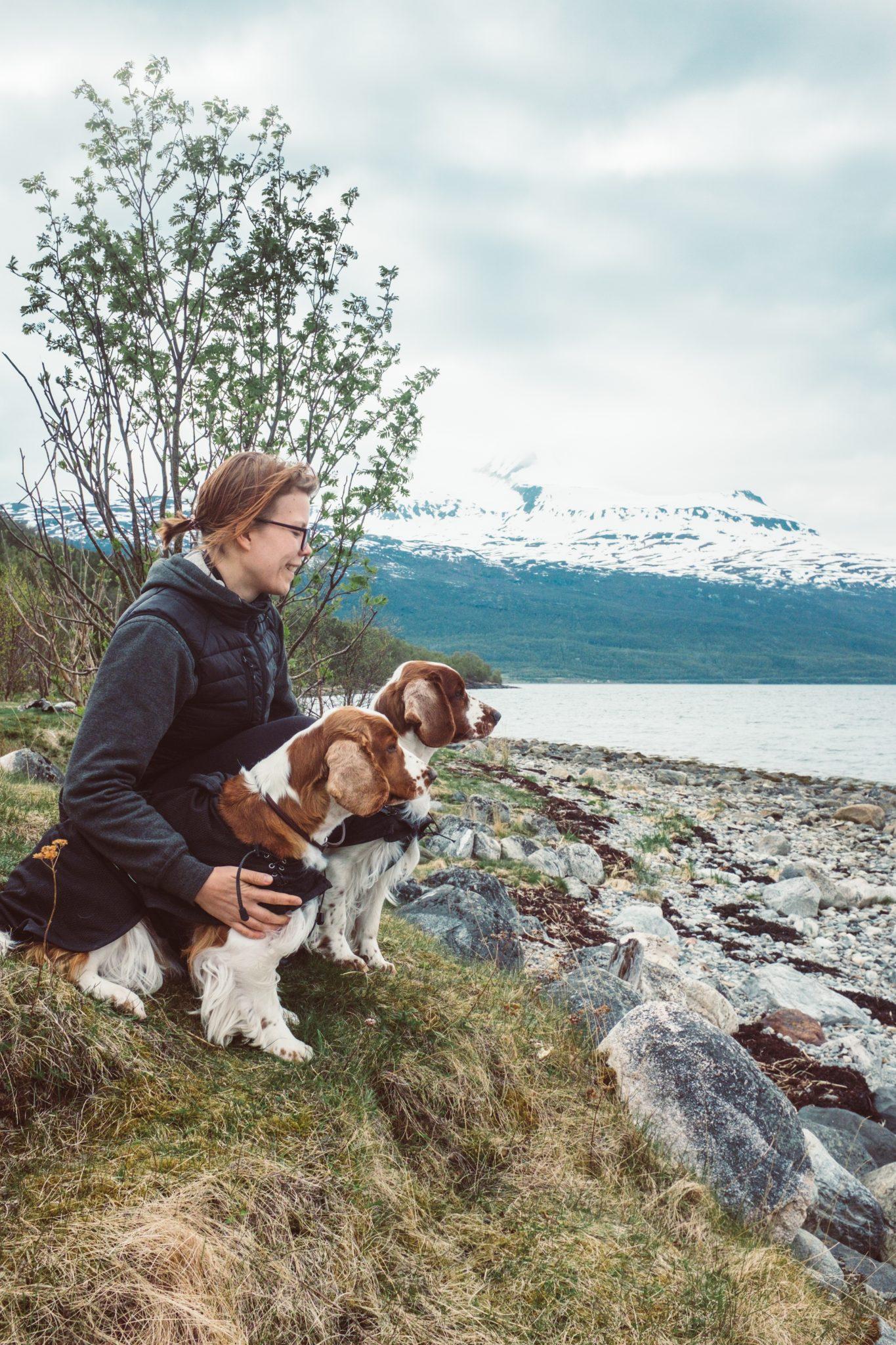 Matkamuisto, Tromssa